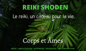 formation reiki rennes 1er degré