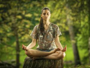 méditer en foret
